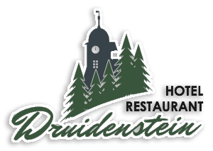 logo druidenstein final